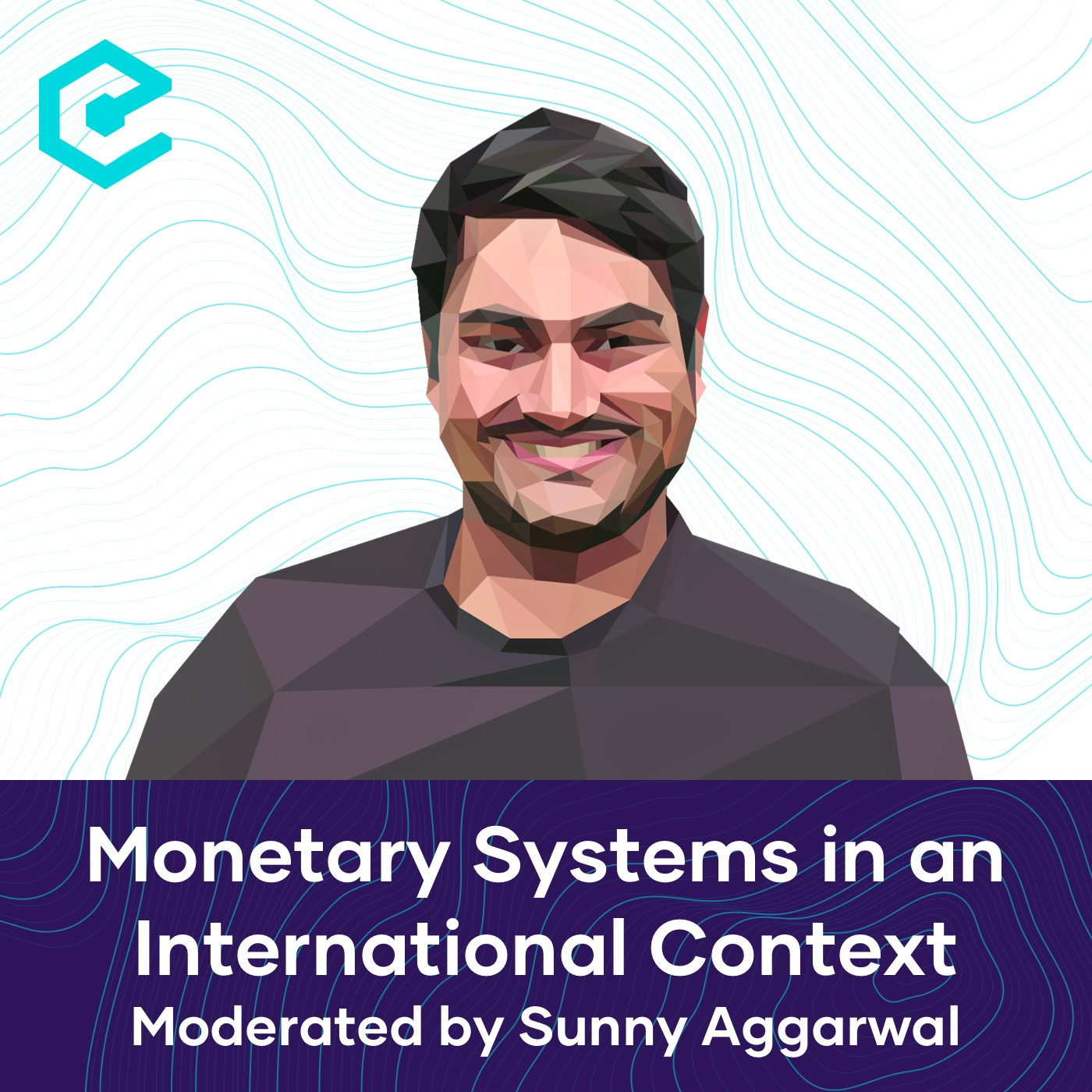 Monetary Systems in an International Context