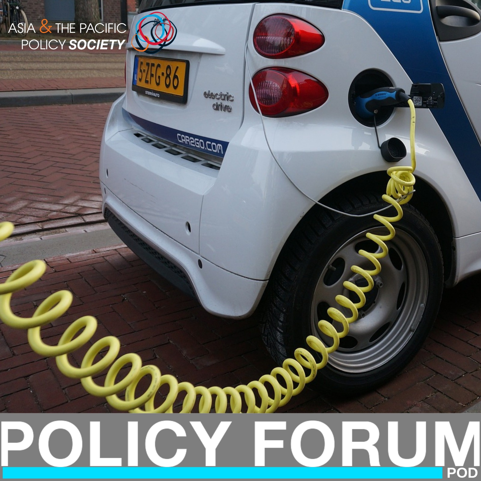 Driving electric vehicle policy