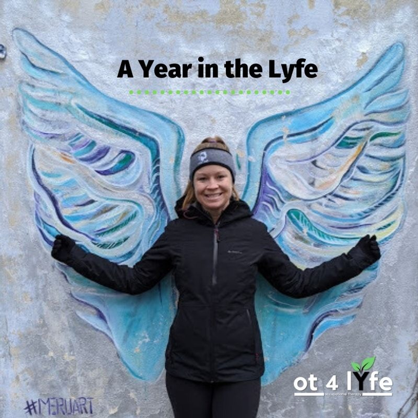 A Year in the Lyfe