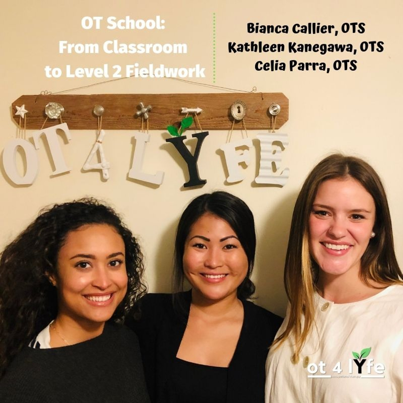 OT School: From Classroom to Level 2 Fieldwork