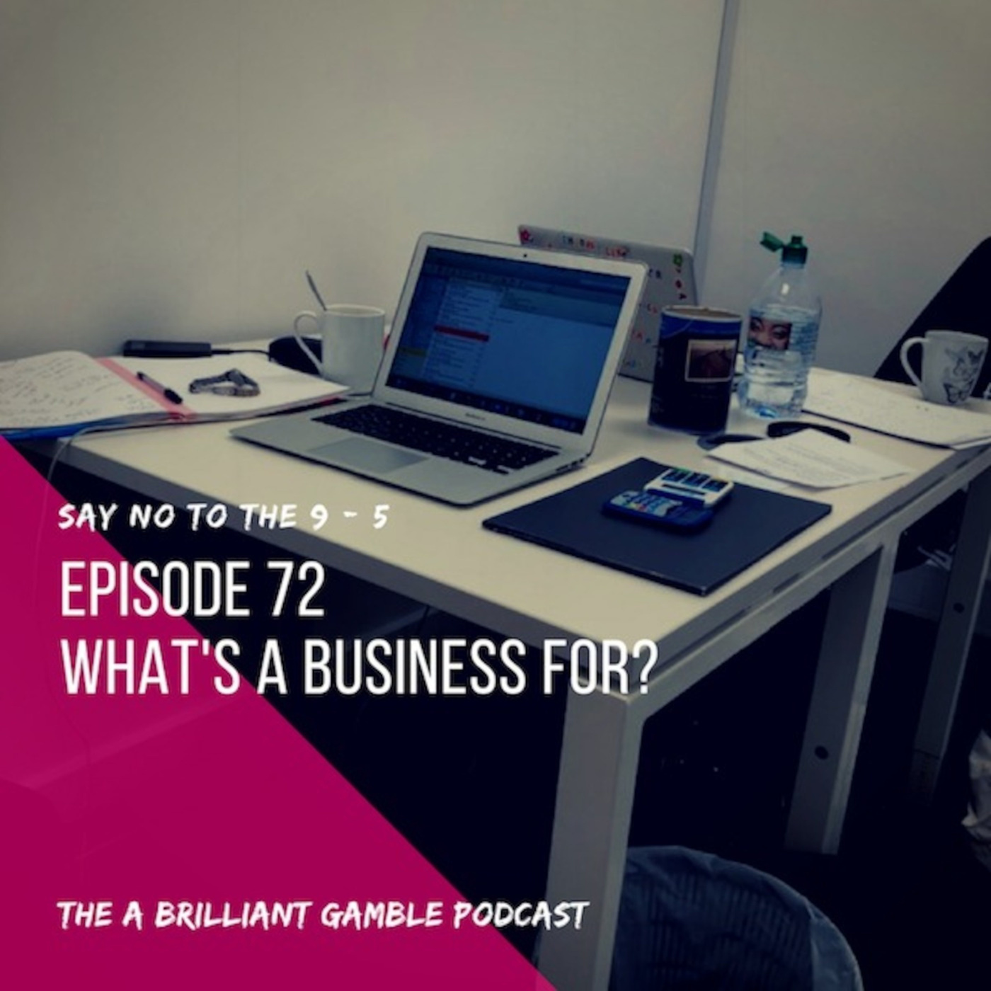 Episode 72: What's a business for?