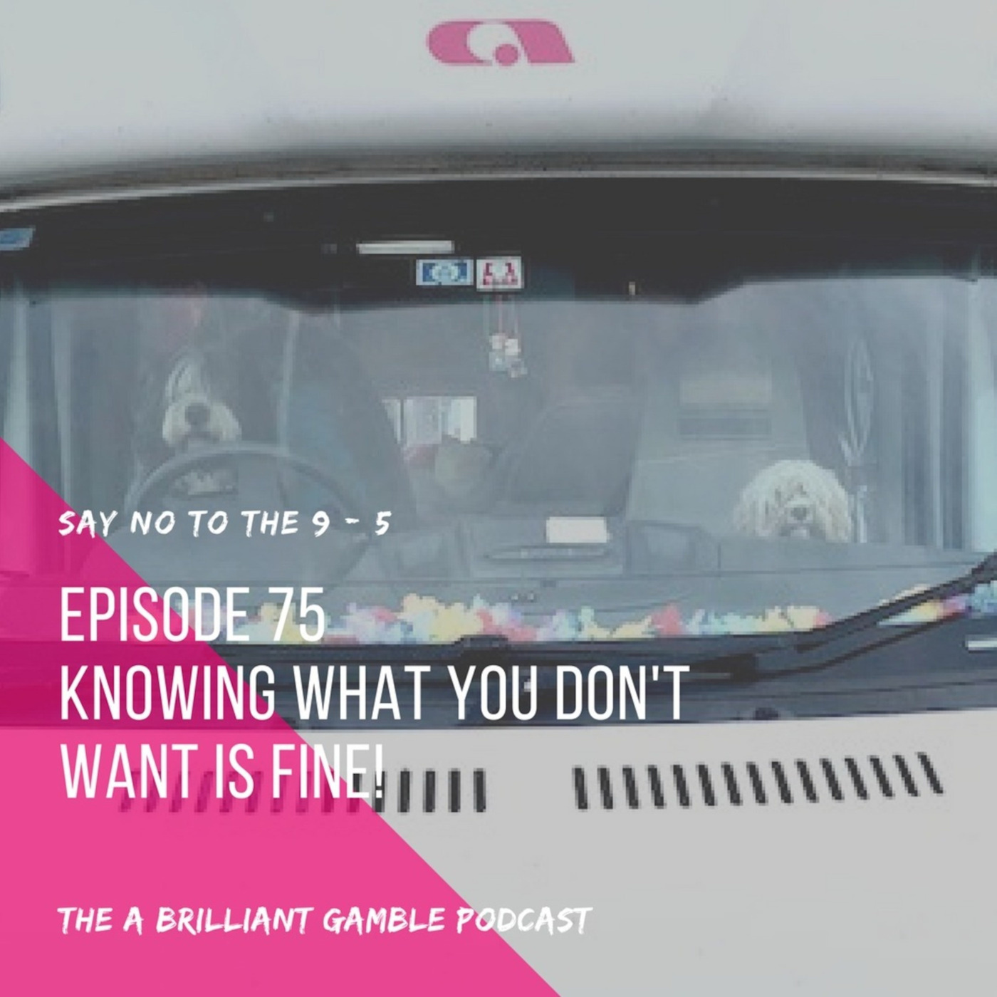 Episode 75: Knowing What You Don't Want is Fine!