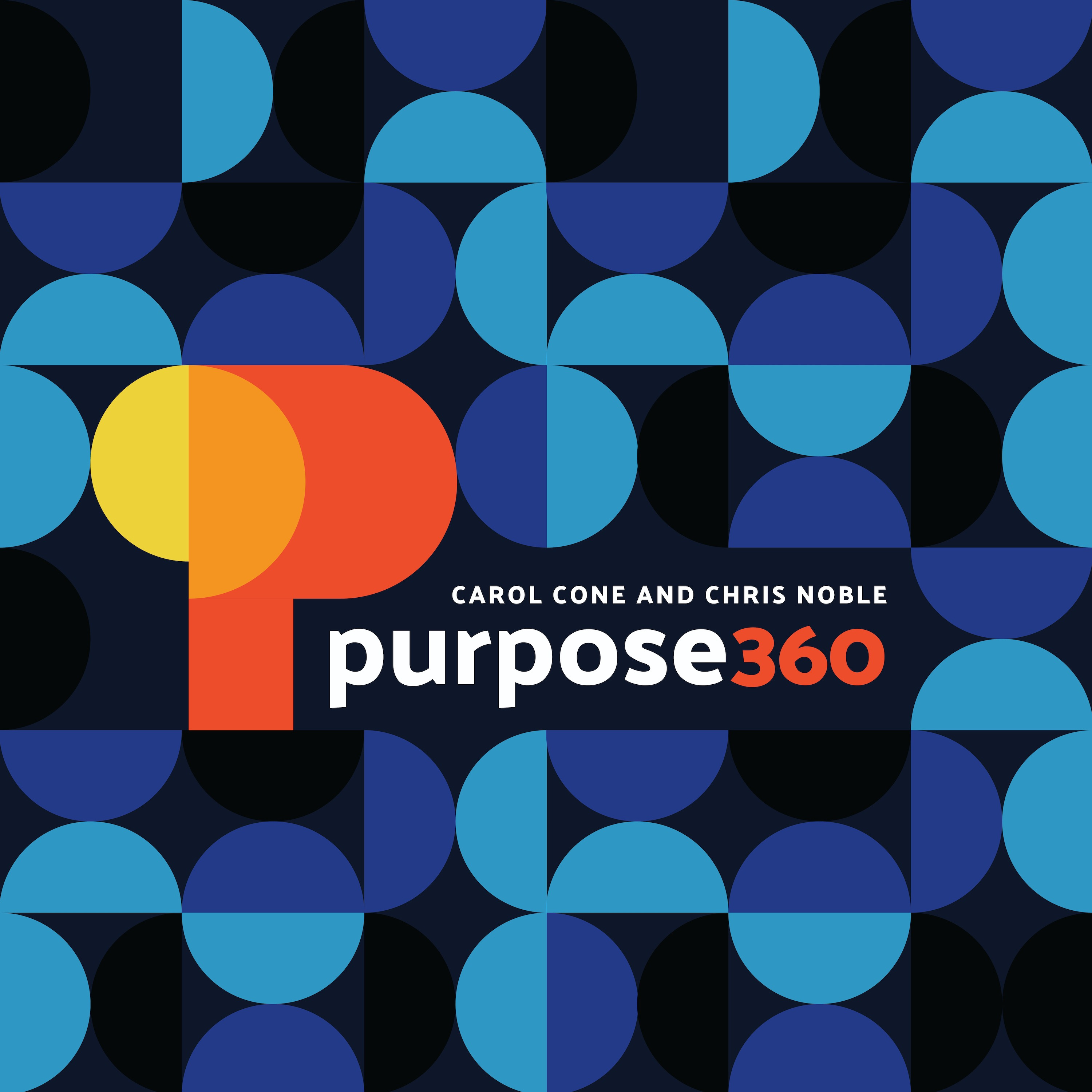 Revisiting the purpose journey – Purpose 360 – Podcast – Podtail