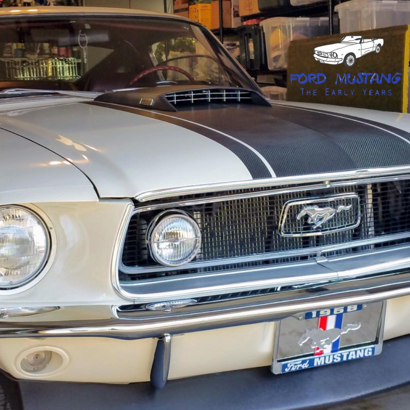 1967 SHELBY GT500 GT-500 MUSTANG COBRA FRONT FENDER EMBLEM INSERT NEW EMBOSSED