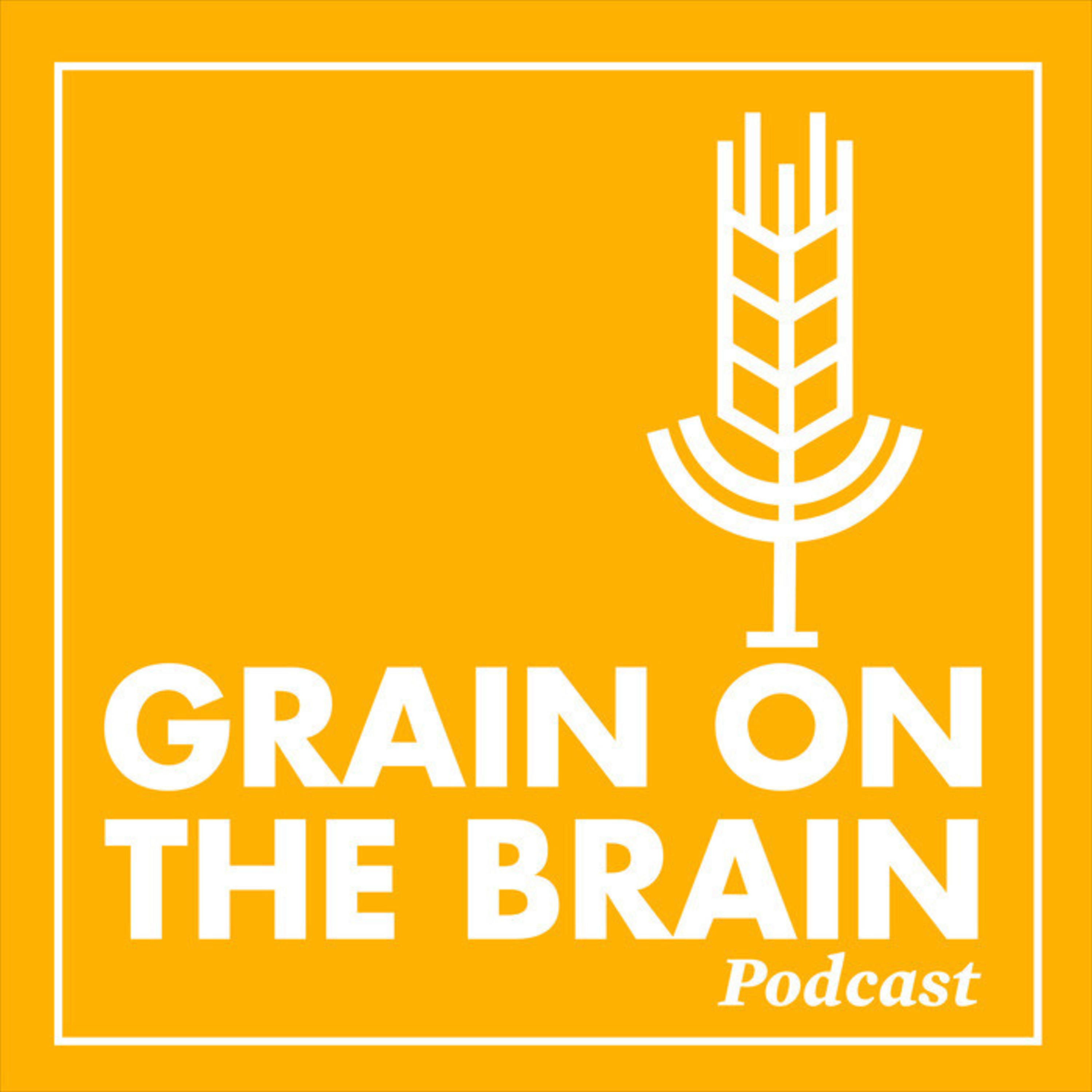 Organic Grain Transition: If I Knew Then What I Know Now