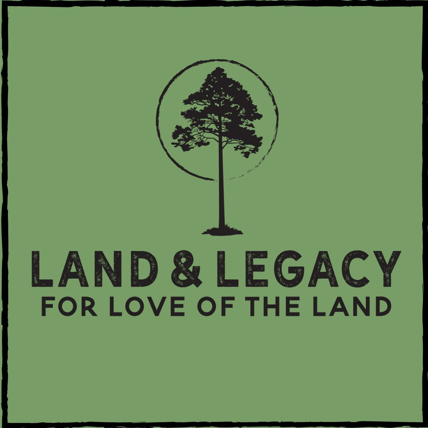 Land & Legacy - Timber Management in the North Woods