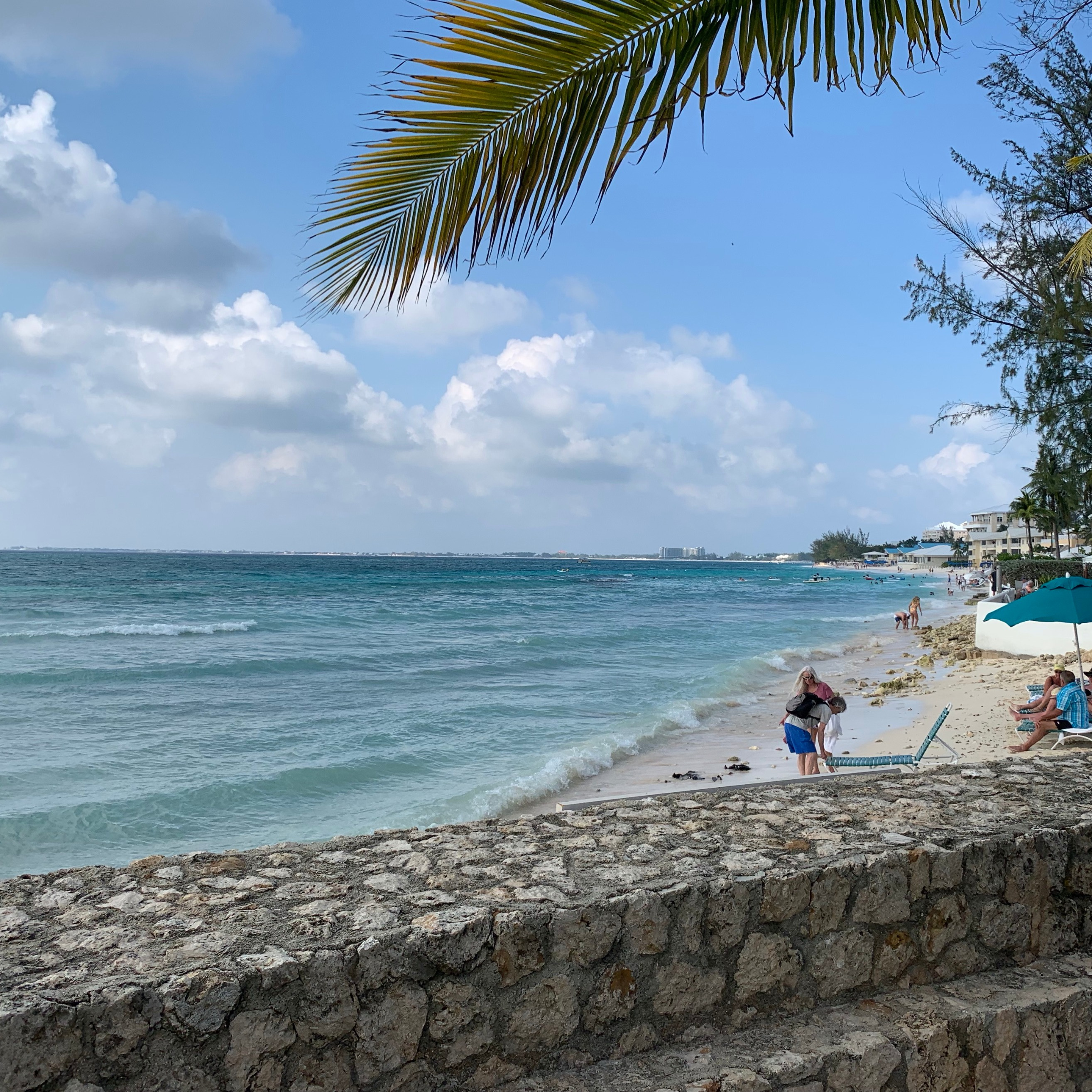 DNS, Registries, and Registrars 50% Live from the Cayman Islands w/ Tosh Lyons