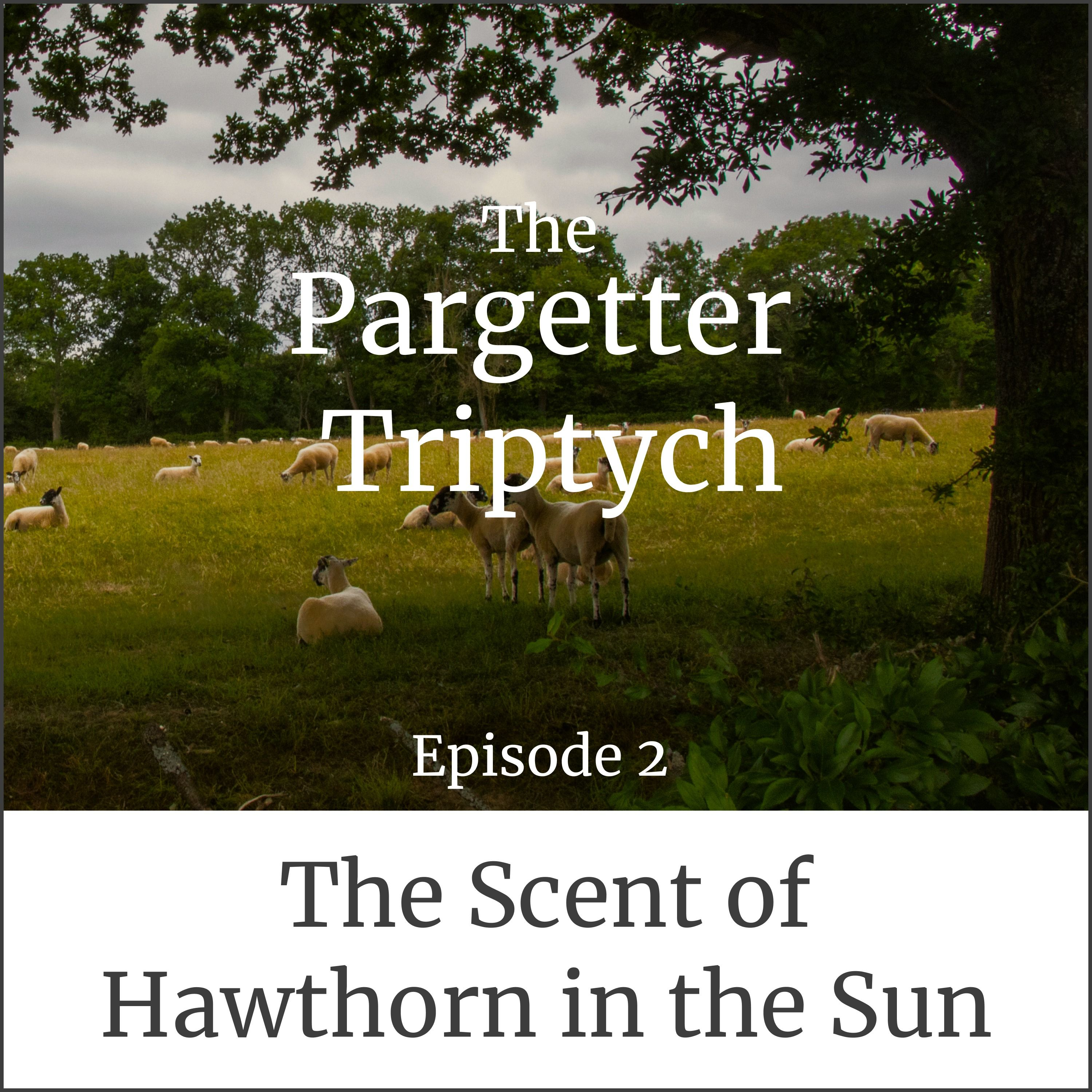 Episode 2: The Scent of Hawthorn in the Sun